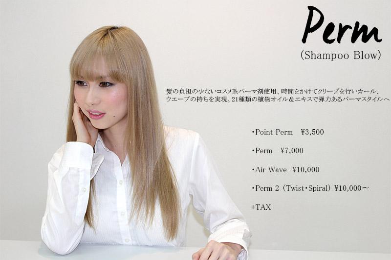 perm price